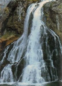 Lebendiges Wasser